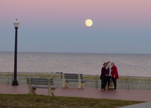 Sunday Nov. 13, 2016.  Across from the Shawmont Hotel on Ocean Avenue in Ocean Grove.  By Rich Amole, Blogfinger staff. ©