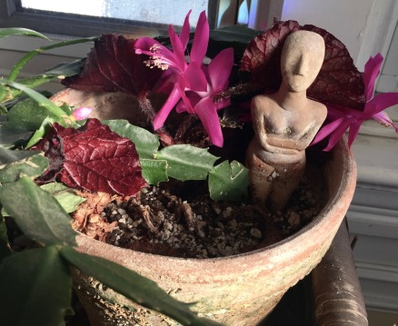 Eileen's Christmas cactus. 12/16. Paul Goldfinger photo. The prehistoric figure is explained below. ©