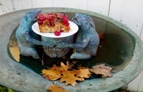 Frruit cake in Eileen's garden. 12/22/16. Paul Goldfinger photo ©