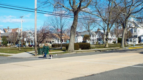 This is the north side of Main Ave. along the edge of Firemen's Park. Imagine it clogged with diagonally parked cars. ©