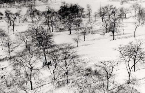 Central Park from 5th Avenue rooftop. By Paul Goldfinger©. Silver gelatin print.