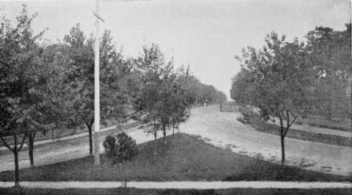 19th century view of Main Avenue as one drives a horse and buggy through the gates. Source: OG historian Justin Truth.