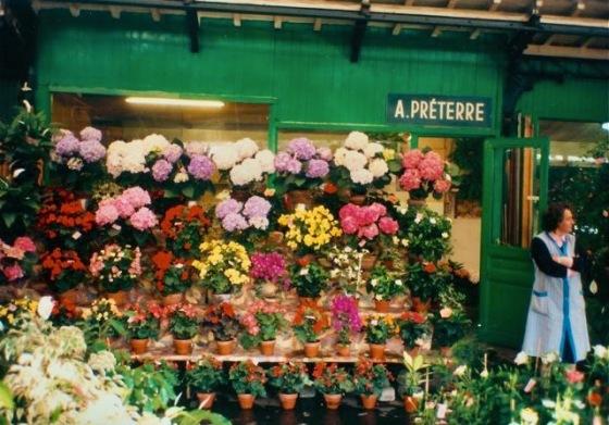 Paris flower